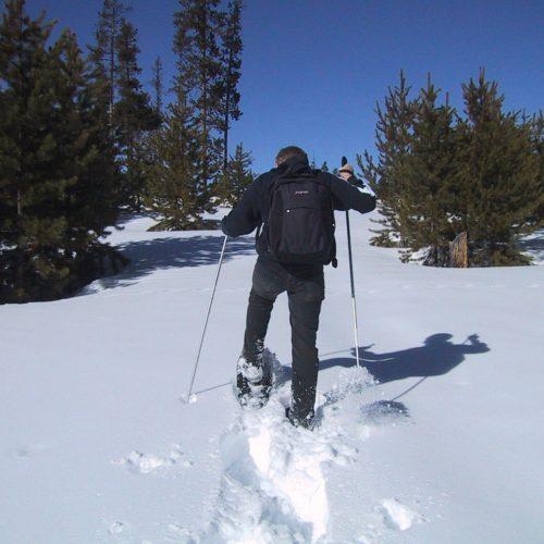 Päiväretki Torron suolle lumikengillä
